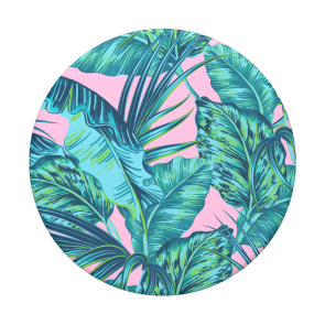 PopSockets-View